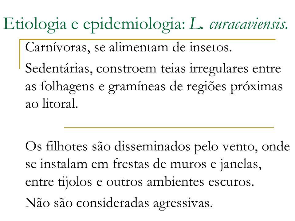 Etiologia e epidemiologia: L. curacaviensis.