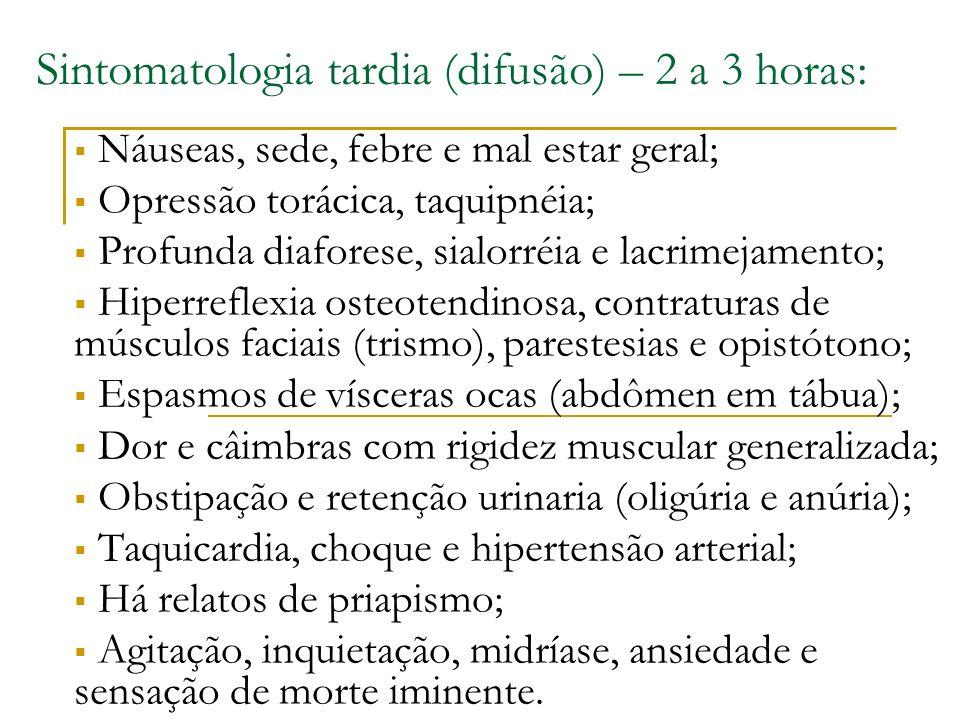 Sintomatologia tardia (difusão) – 2 a 3 horas: