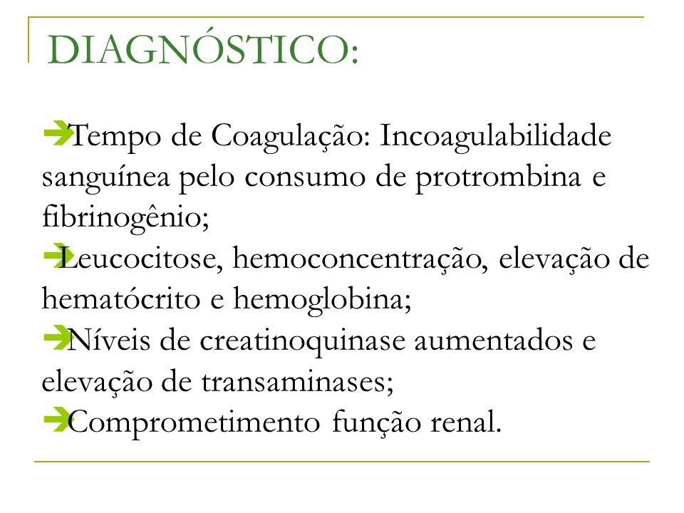 DIAGNÓSTICO:Tempo de Coagulação: Incoagulabilidade sanguínea pelo consumo de protrombina e fibrinogênio;
