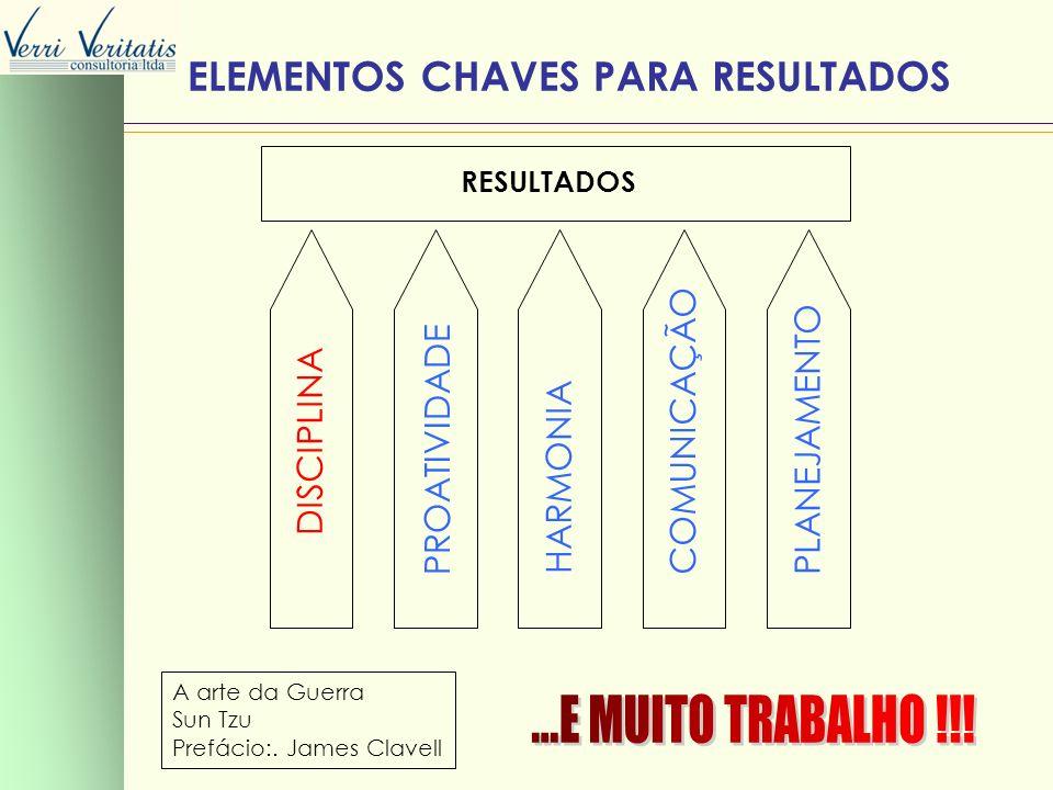 ELEMENTOS CHAVES PARA RESULTADOS