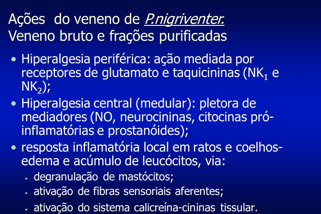 Ações do veneno de P.nigriventer. Veneno bruto e frações purificadas