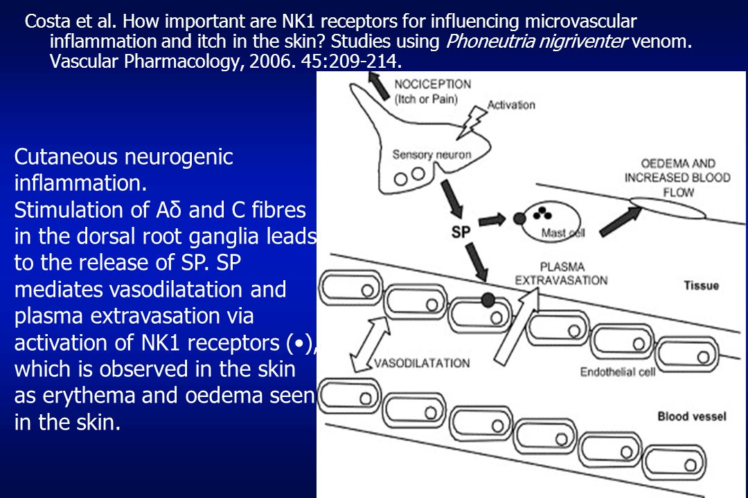 Cutaneous neurogenic inflammation.
