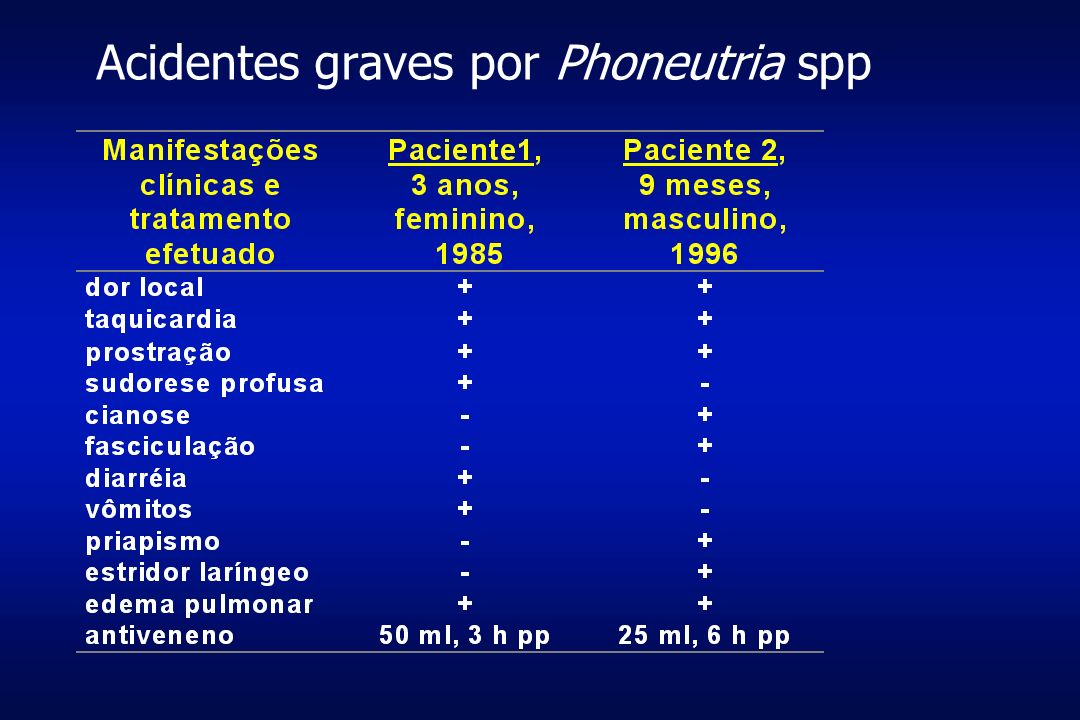 Acidentes graves por Phoneutria spp