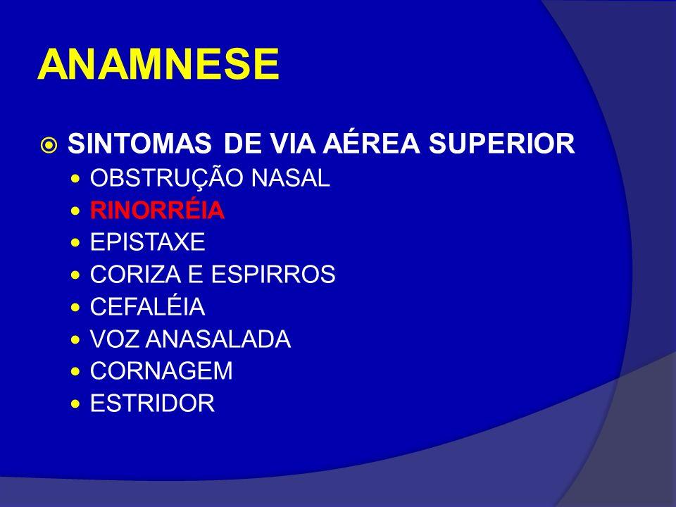 ANAMNESE SINTOMAS DE VIA AÉREA SUPERIOR OBSTRUÇÃO NASAL RINORRÉIA
