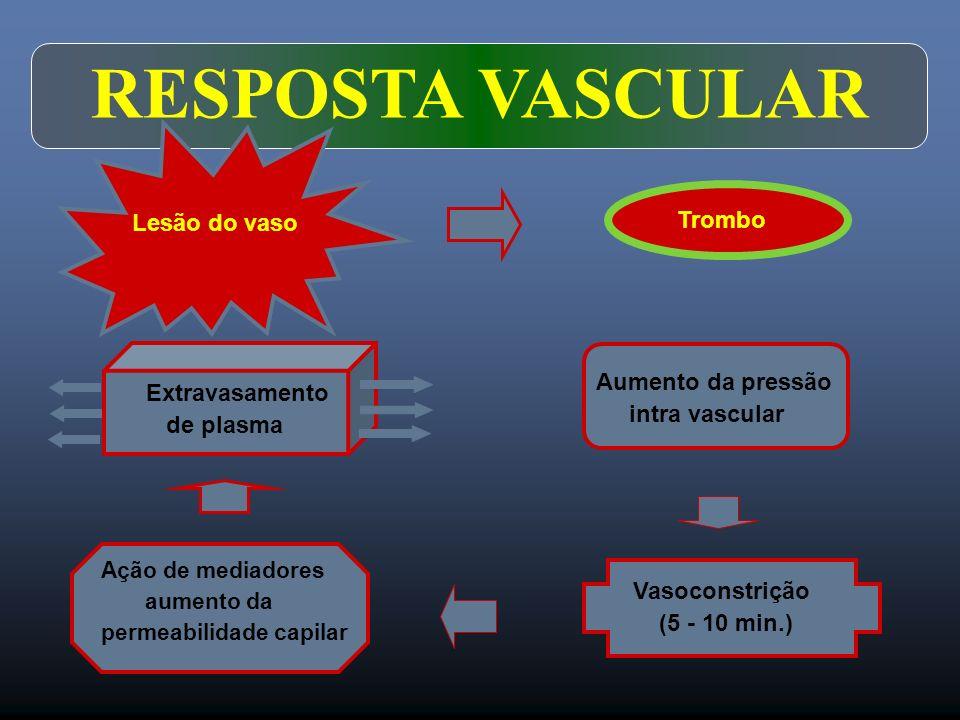 RESPOSTA VASCULAR Lesão do vaso Trombo Aumento da pressão