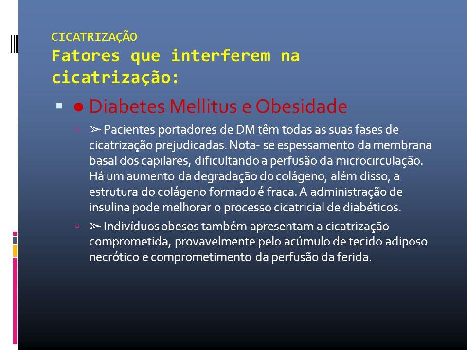 ● Diabetes Mellitus e Obesidade