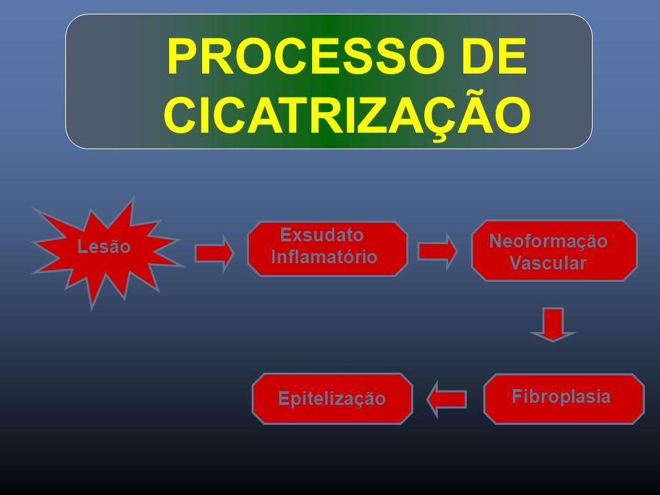 PROCESSO DE CICATRIZAÇÃO