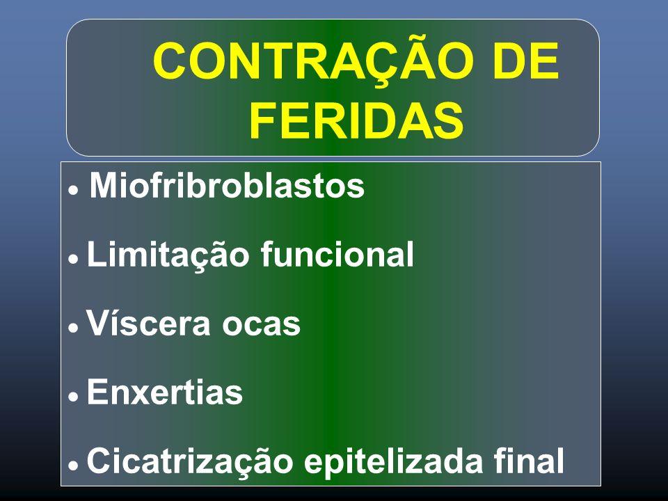 CONTRAÇÃO DE FERIDAS  Miofribroblastos  Limitação funcional