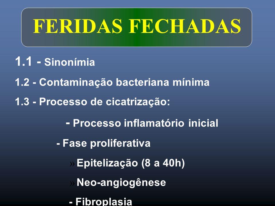 FERIDAS FECHADAS 1.1 - Sinonímia - Processo inflamatório inicial