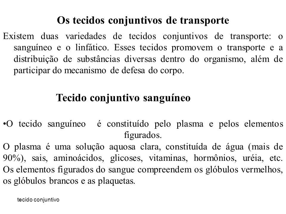 Os tecidos conjuntivos de transporte