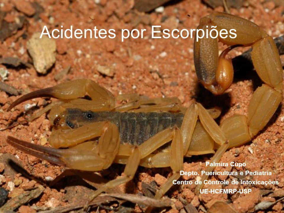 Acidentes por Escorpiões