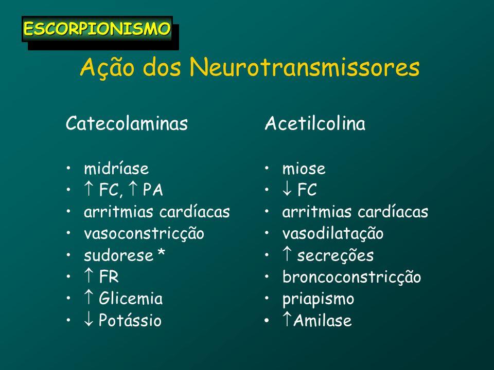 Ação dos Neurotransmissores