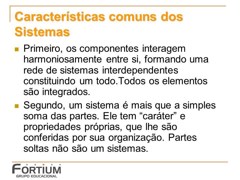 Características comuns dos Sistemas