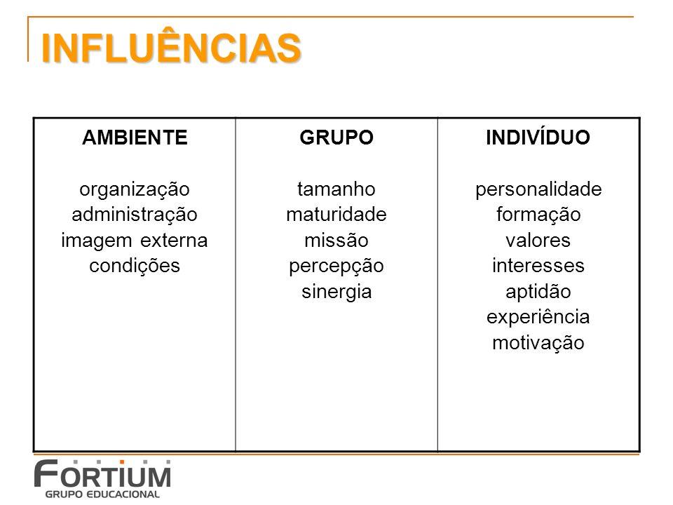 INFLUÊNCIAS AMBIENTE organização administração imagem externa