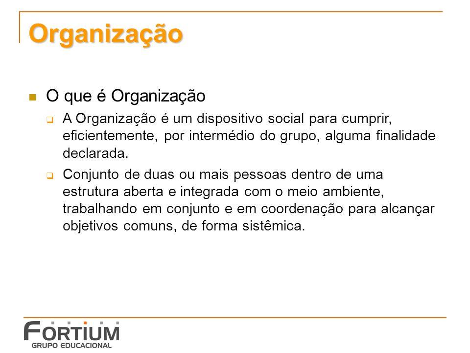 Organização O que é Organização