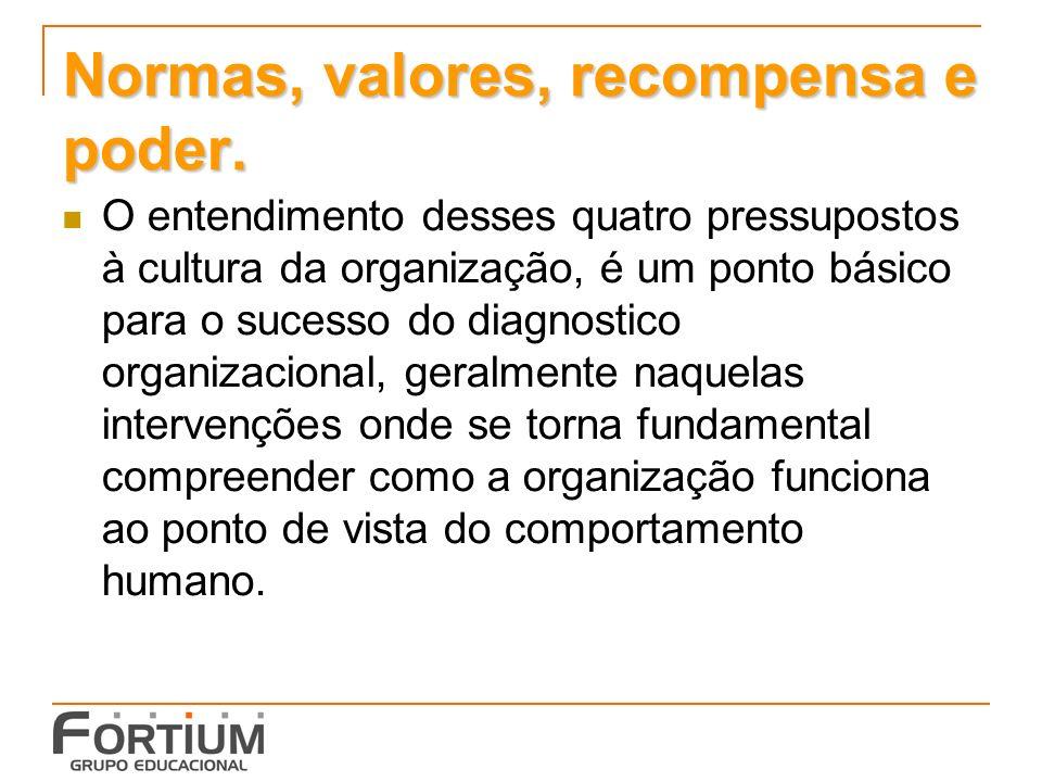 Normas, valores, recompensa e poder.