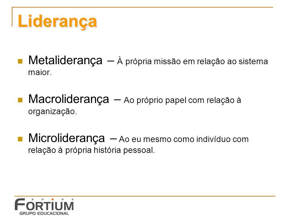 Liderança Metaliderança – À própria missão em relação ao sistema maior. Macroliderança – Ao próprio papel com relação à organização.