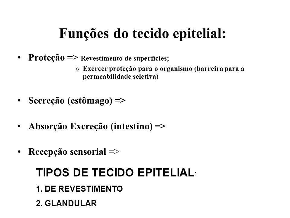 Funções do tecido epitelial: