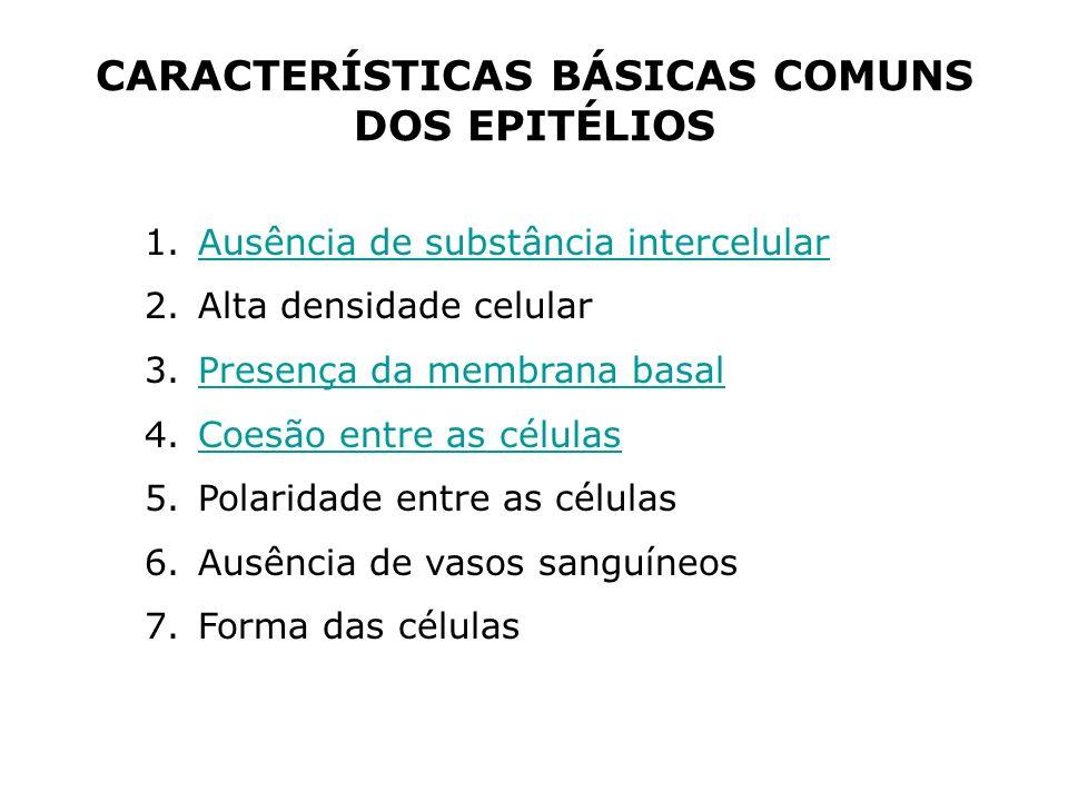 CARACTERÍSTICAS BÁSICAS COMUNS DOS EPITÉLIOS