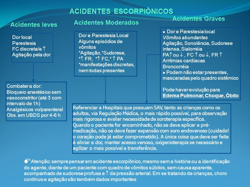 ACIDENTES ESCORPIÔNICOS