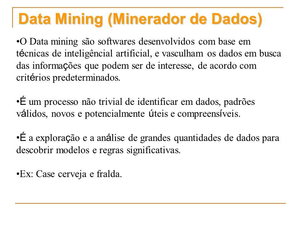 Data Mining (Minerador de Dados)