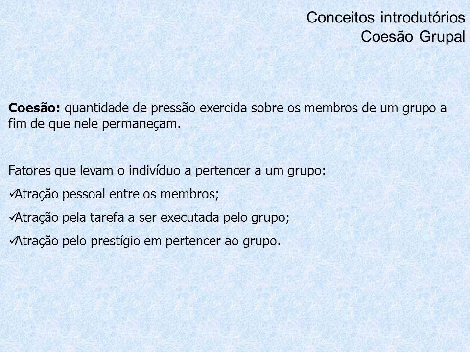 Conceitos introdutórios Coesão Grupal