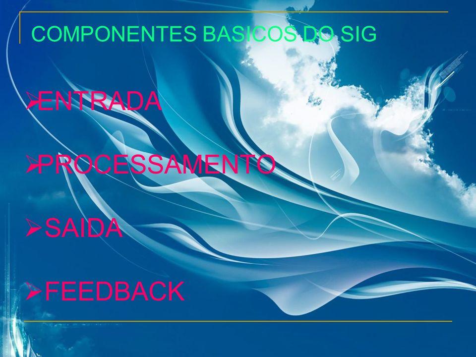 COMPONENTES BASICOS DO SIG