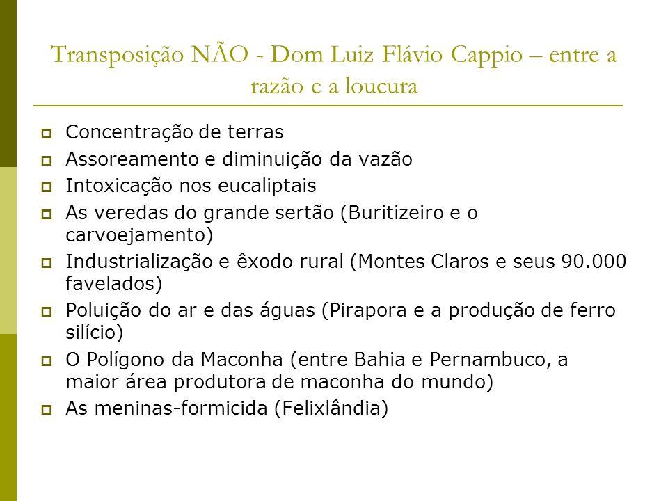 Transposição NÃO - Dom Luiz Flávio Cappio – entre a razão e a loucura