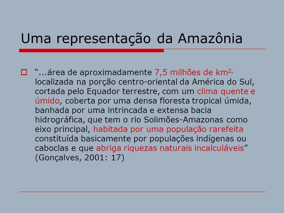Uma representação da Amazônia