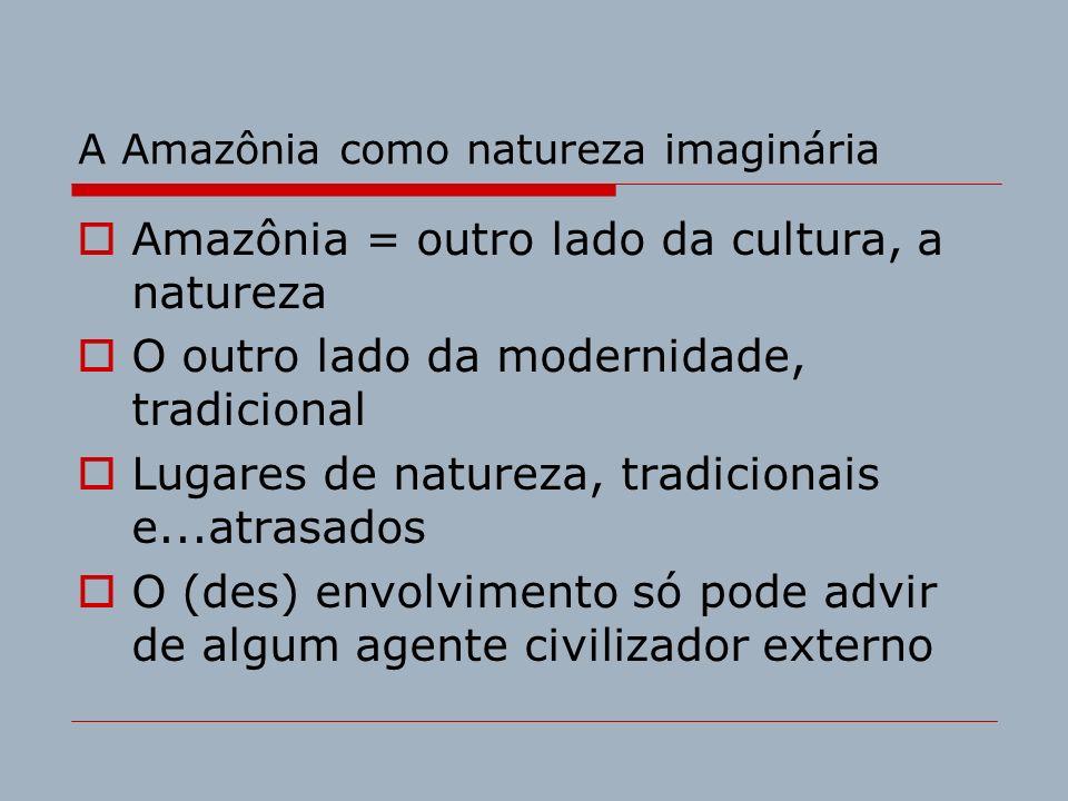 A Amazônia como natureza imaginária