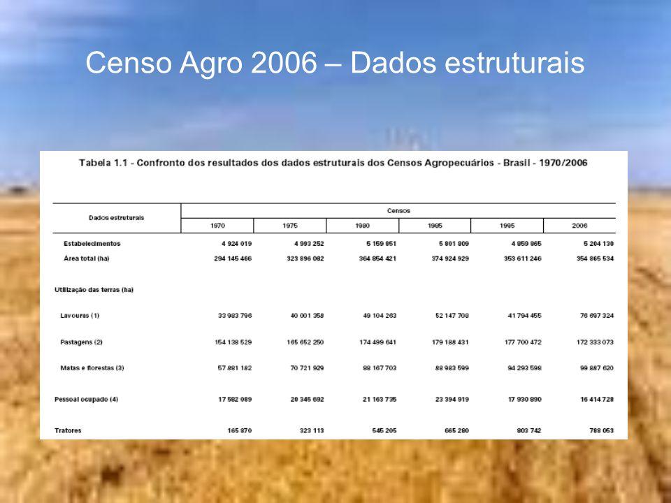 Censo Agro 2006 – Dados estruturais