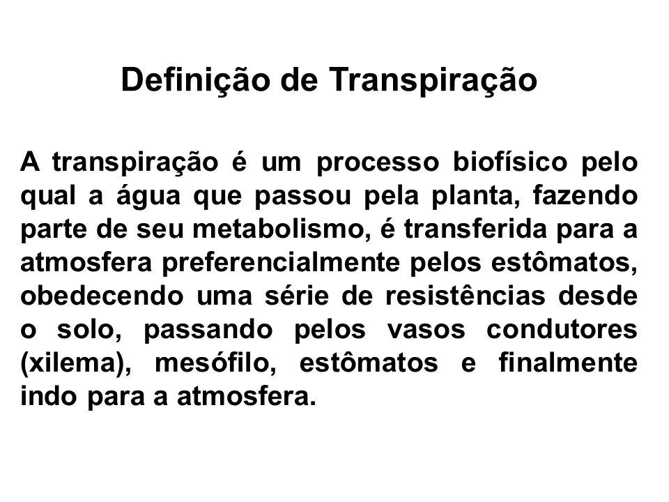Definição de Transpiração