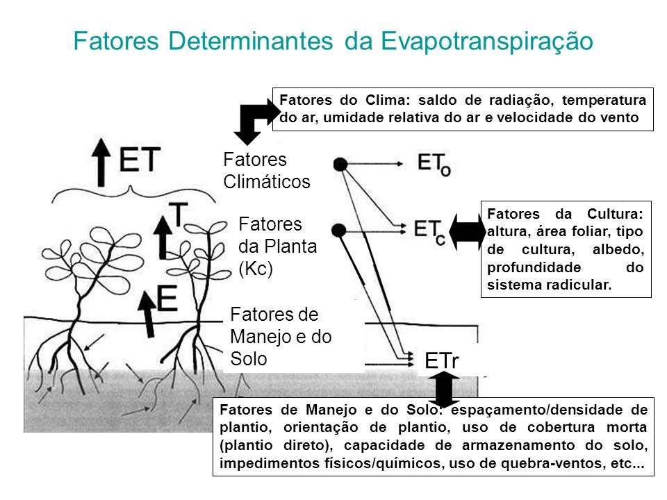 Fatores Determinantes da Evapotranspiração