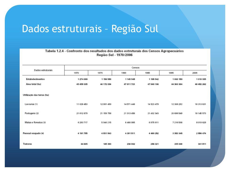 Dados estruturais – Região Sul
