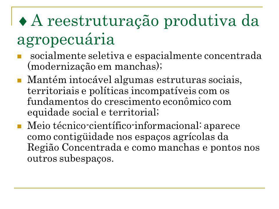 A reestruturação produtiva da agropecuária