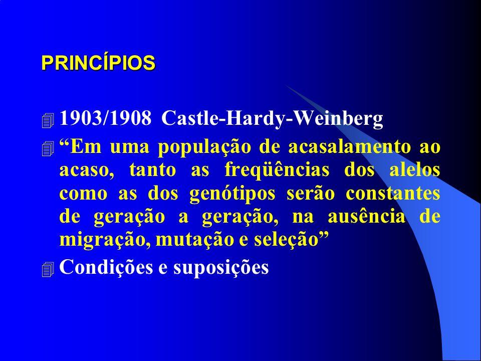 1903/1908 Castle-Hardy-Weinberg