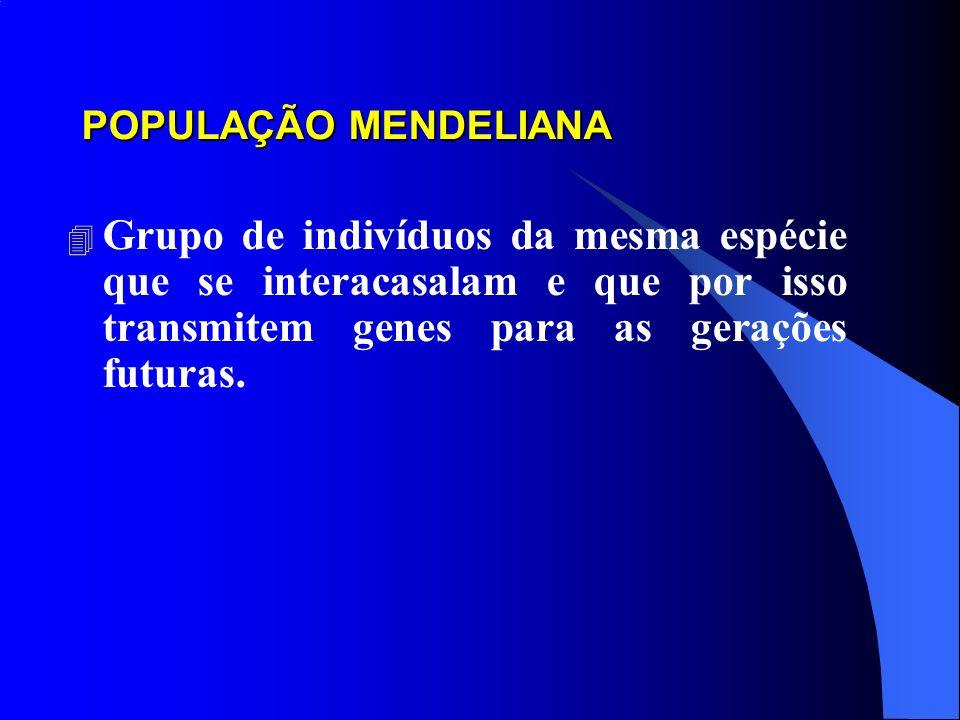 POPULAÇÃO MENDELIANA Grupo de indivíduos da mesma espécie que se interacasalam e que por isso transmitem genes para as gerações futuras.