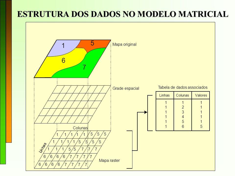 ESTRUTURA DOS DADOS NO MODELO MATRICIAL