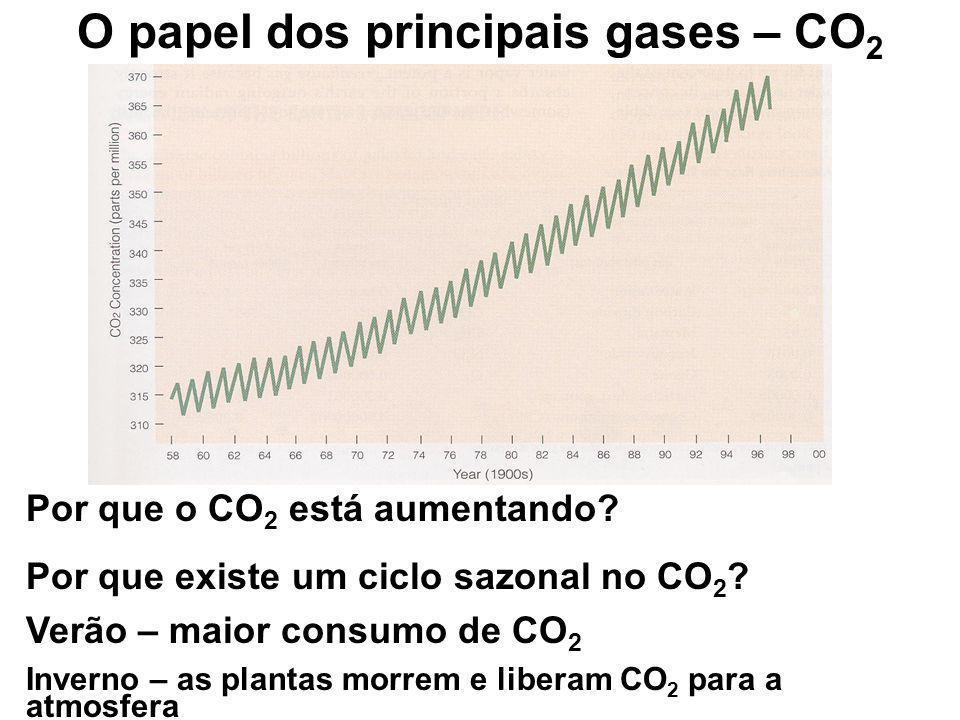 O papel dos principais gases – CO2