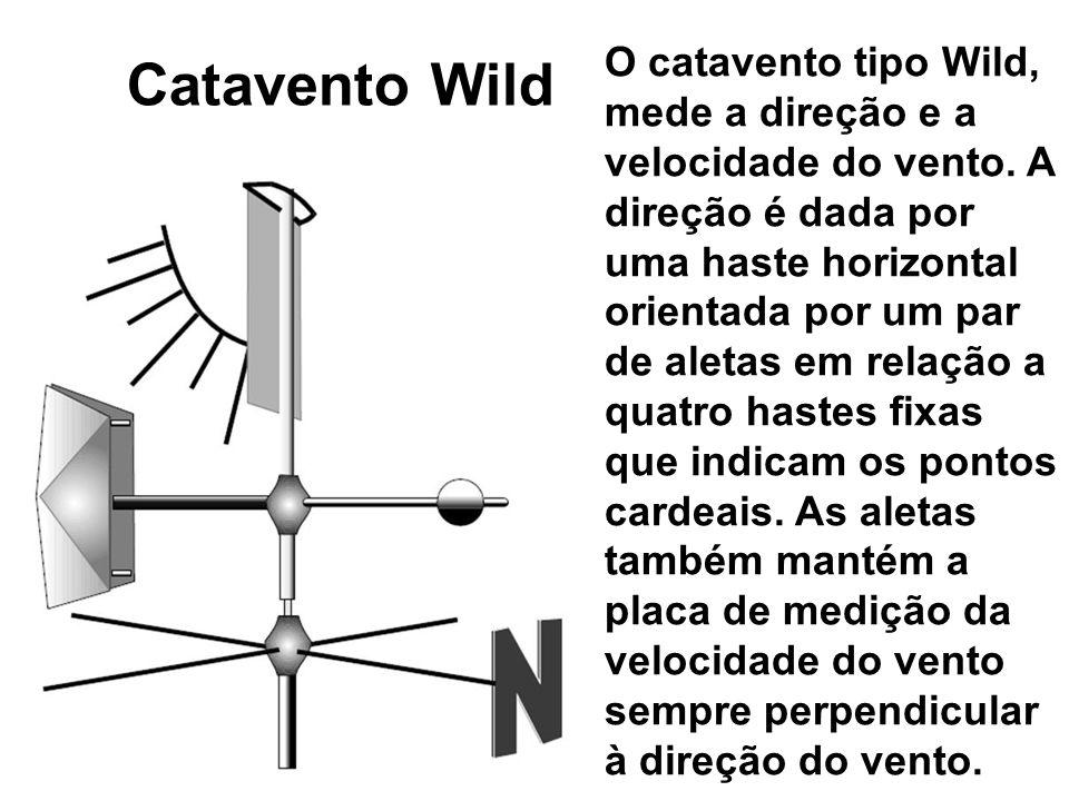 Catavento Wild
