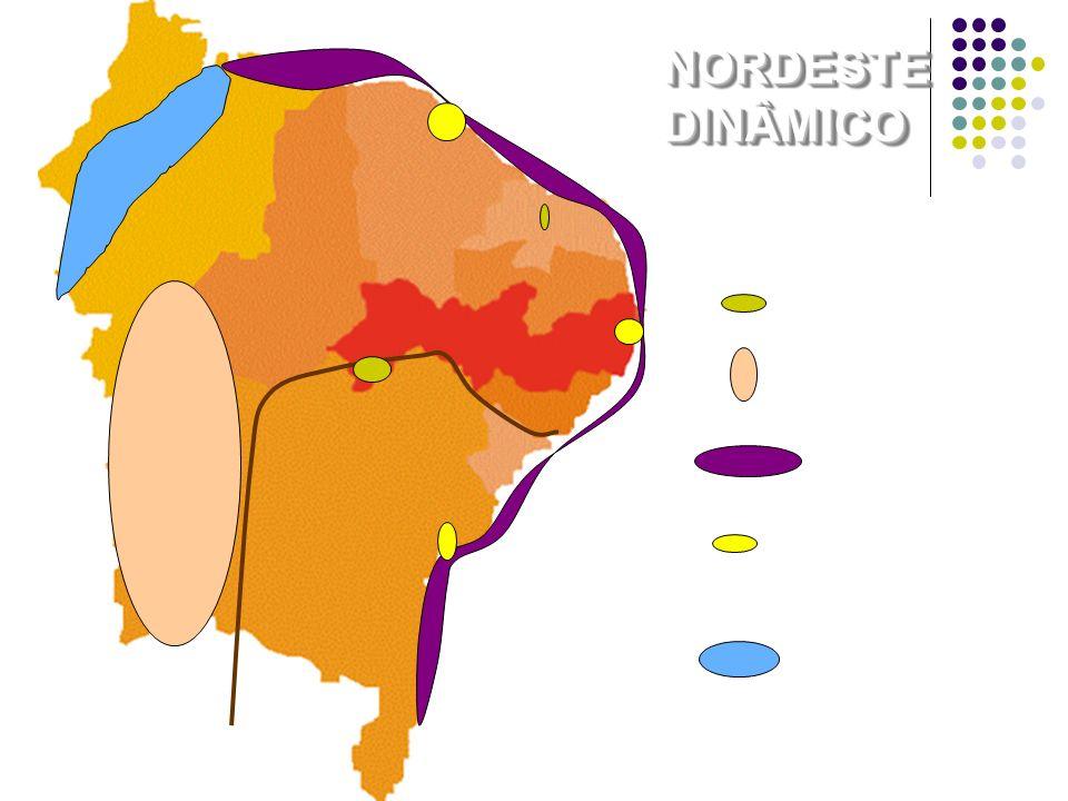 NORDESTE DINÂMICO Fruticultura Grãos Turismo Pólos Industriais