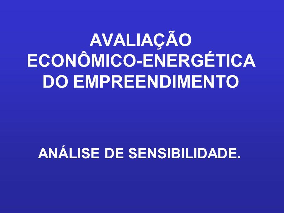 AVALIAÇÃO ECONÔMICO-ENERGÉTICA DO EMPREENDIMENTO