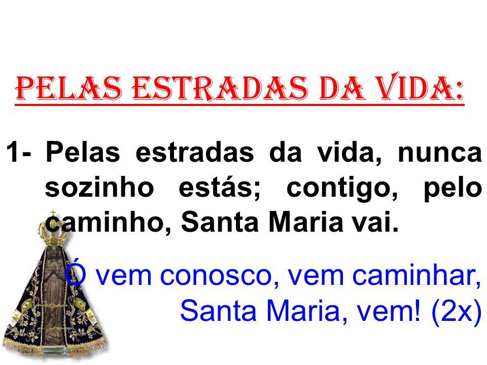 PELAS ESTRADAS DA VIDA: