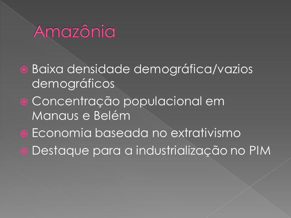 Amazônia Baixa densidade demográfica/vazios demográficos