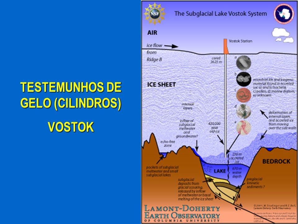 TESTEMUNHOS DE GELO (CILINDROS)