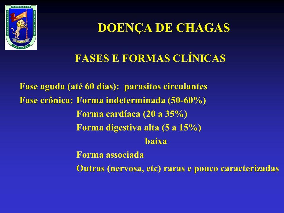 FASES E FORMAS CLÍNICAS