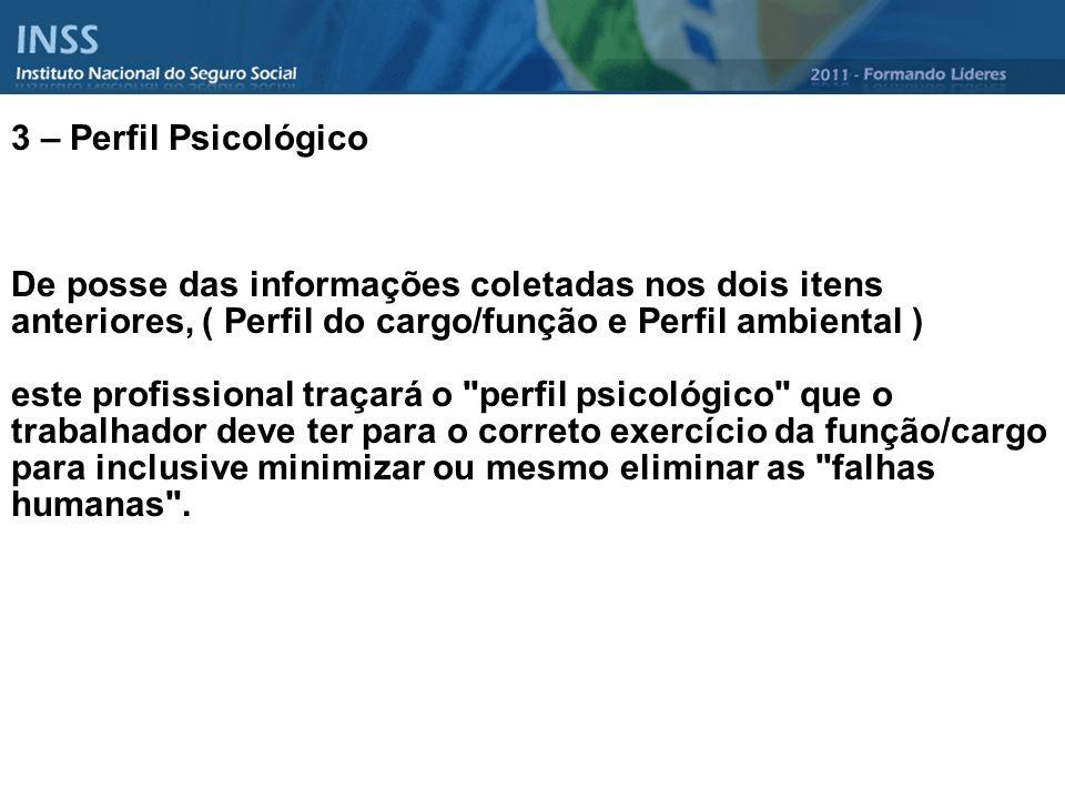 3 – Perfil Psicológico De posse das informações coletadas nos dois itens anteriores, ( Perfil do cargo/função e Perfil ambiental )