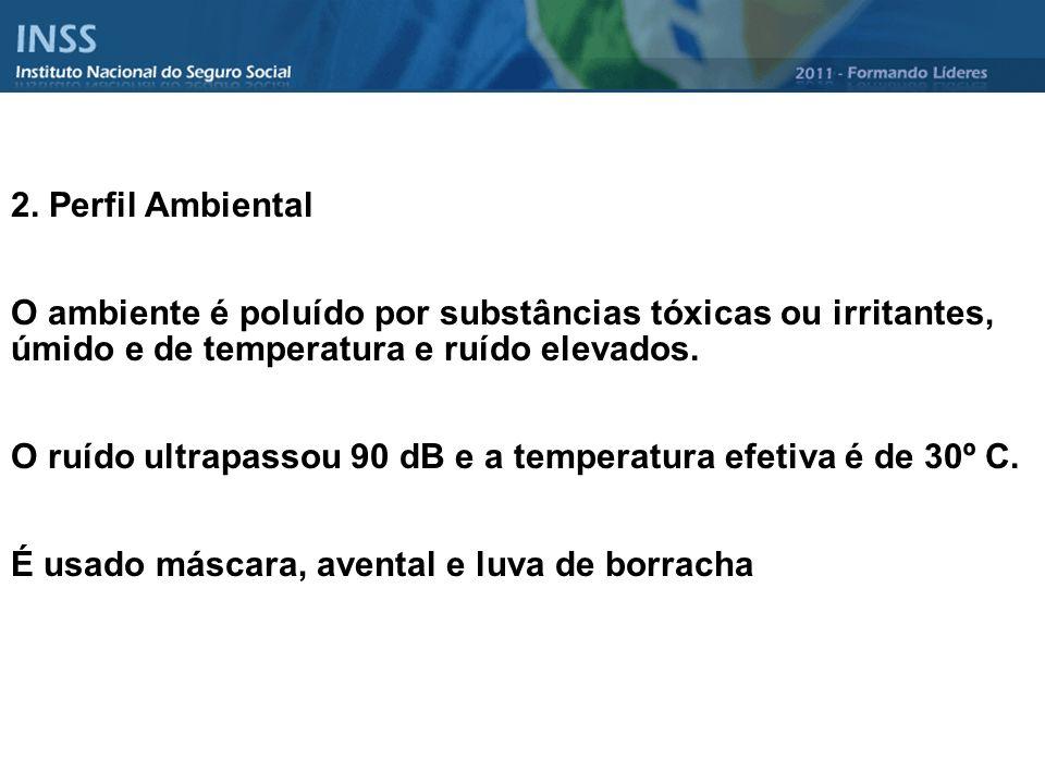 2. Perfil Ambiental O ambiente é poluído por substâncias tóxicas ou irritantes, úmido e de temperatura e ruído elevados.