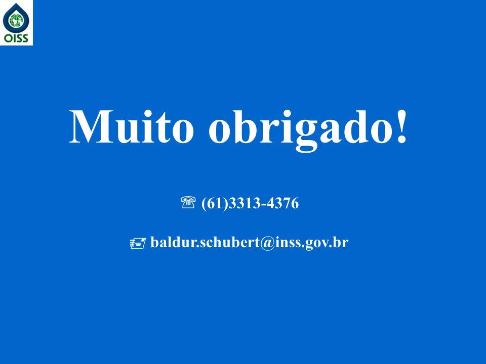  baldur.schubert@inss.gov.br