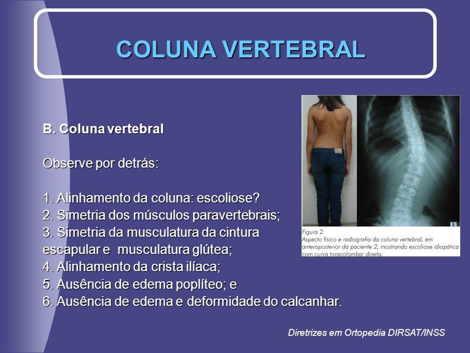 COLUNA VERTEBRAL B. Coluna vertebral Observe por detrás: